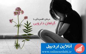 افسردگی و راه های درمان با گیاهان دارویی